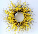 Forsythia Wreath, Winter Jasmine